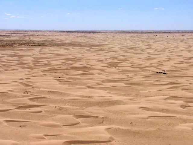 Desert form above