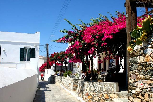 Artemonas, Sifnos